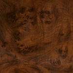 Ronce de noyer _ Walnut wood
